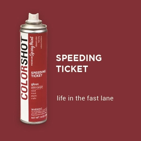 Picture of Speeding Ticket color