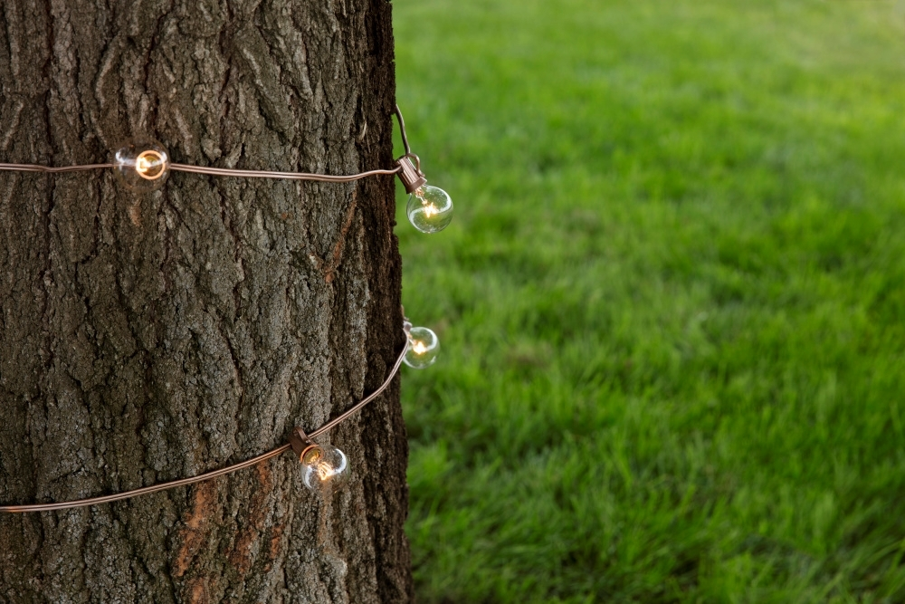 COLORSHOT Spray Painted String Lights