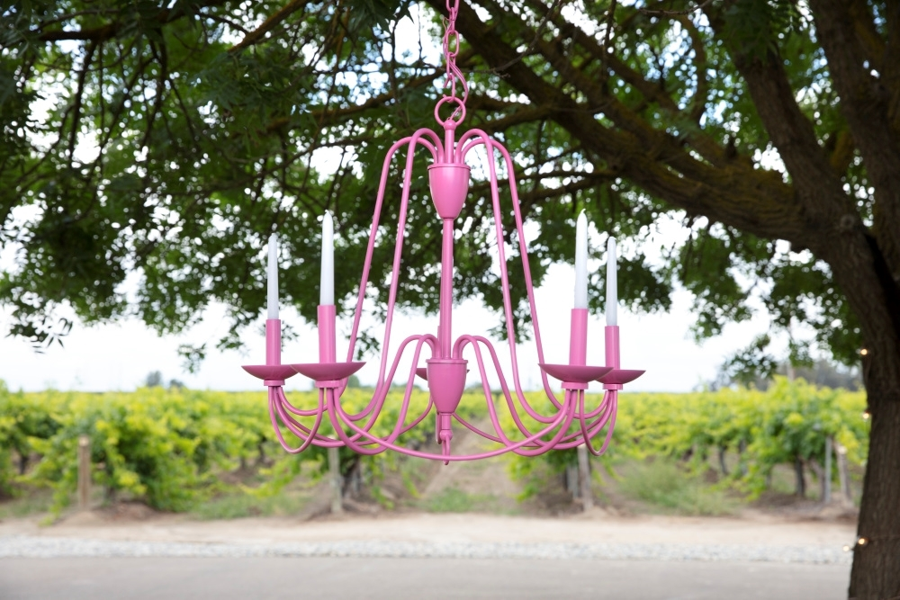 COLORSHOT Farmer's Daughter Spray Painted Chandelier