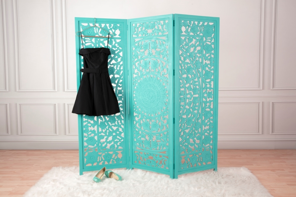 COLORSHOT Painted Room Divider