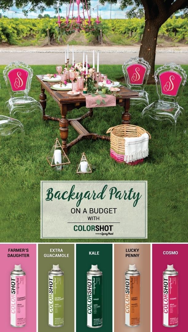 COLORSHOT Color Palette for Backyard Party