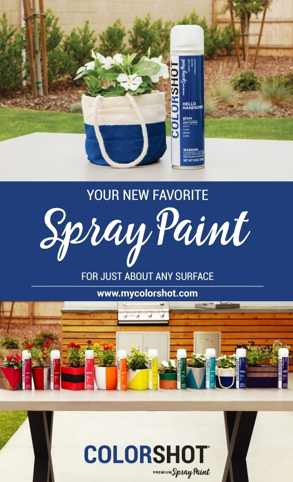 Spray paint canvas with COLORSHOT