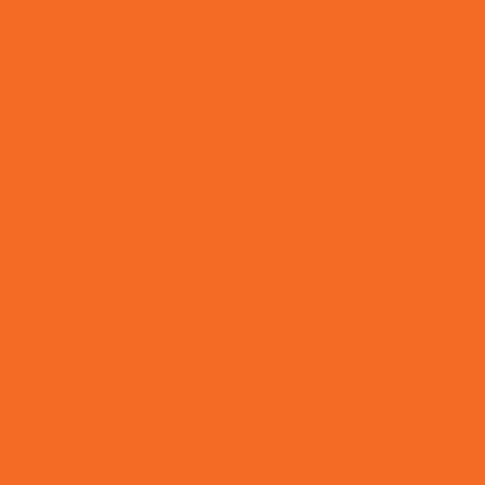 Picture of Orange Slice