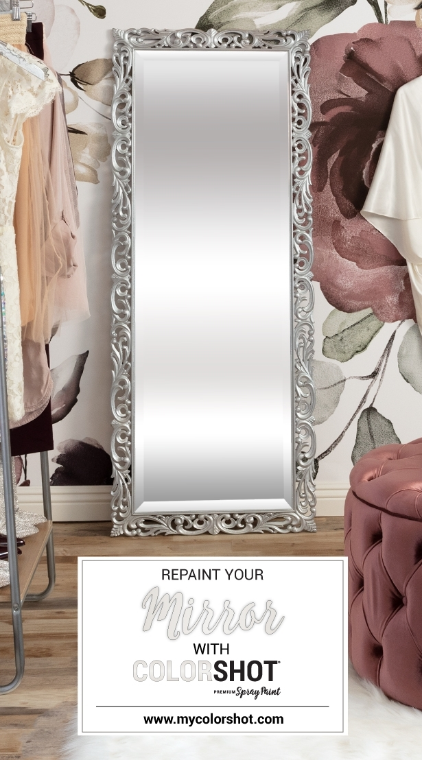 COLORSHOT How To Paint A Mirror