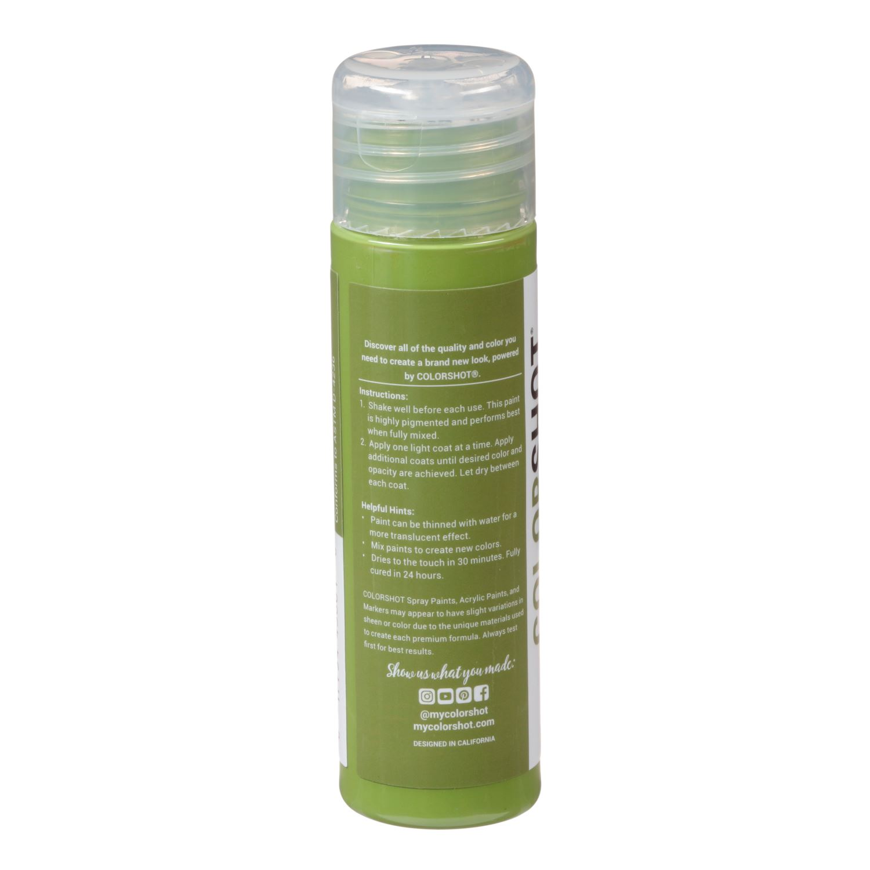 Premium Acrylic Paint Extra Guacamole Satin | COLORSHOT Paint