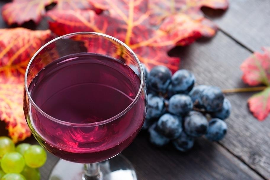 COLORSHOT  Wine Glass