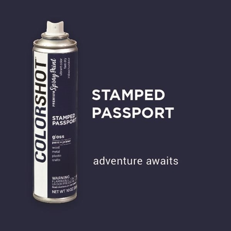 Picture of Stamped Passport color
