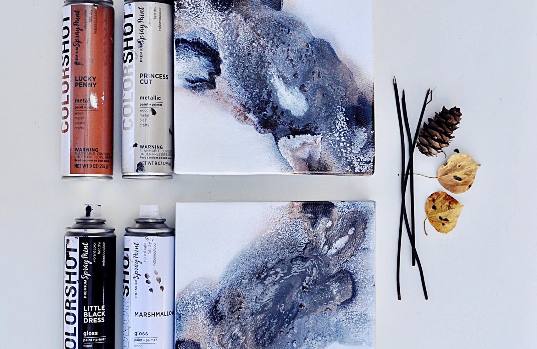 COLORSHOT Marbling Spray Paint Art