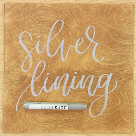 Picture of Premium Paint Marker Silver Lining Metallic color