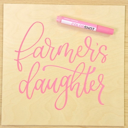 Picture of Premium Paint Marker Farmer's Daughter color