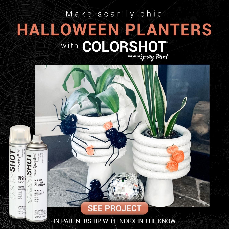 Spooky Chic Planters Halloween Craft Idea